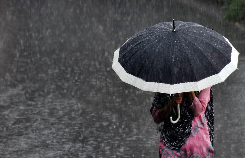 Paraplyer – den stora bilden